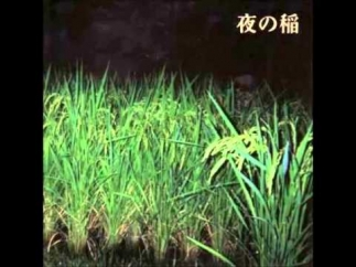 Reiko Kudo: Rice Field Silently Riping in the Night