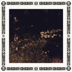 Sarah Davachi: Pale Bloom