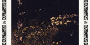 Sarah Davachi: Pale Bloom