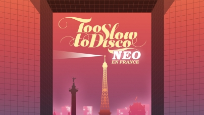 Various Artists: Too Slow to Disco Neo–En France
