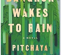 Bangkok Wakes to Rain: by Pitchaya Sudbanthad