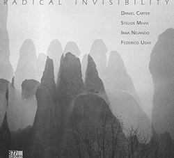 Daniel Carter/Stelios Mihas/Irma Nejando/Federico Ughi: Radical Invisibility