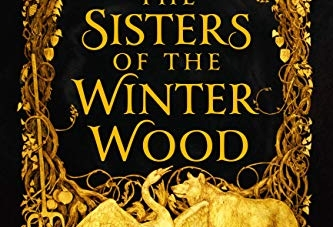 The Sisters of the Winter Wood: by Rena Rossner