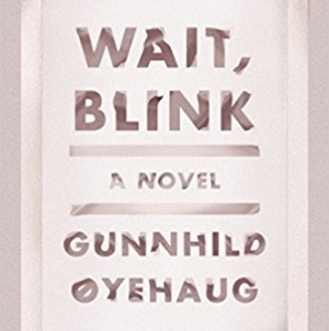 Wait, Blink: by Gunnhild Øyehaug