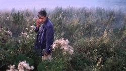 Oeuvre: Tarkovsky: Solaris