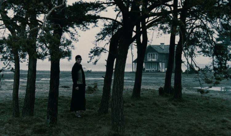 Oeuvre: Tarkovsky: The Sacrifice