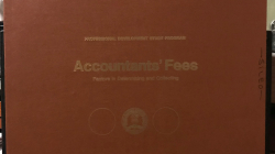 Bargain Bin Babylon: Accountants' Fees