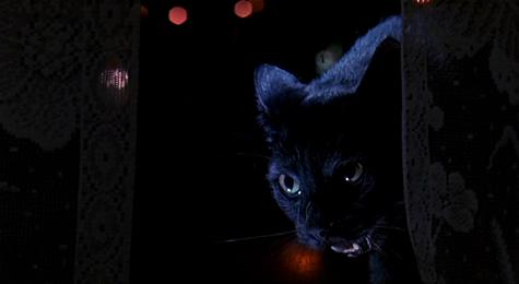 Oeuvre: Argento: Two Evil Eyes