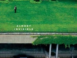 Almost Invisible: by Mark Strand