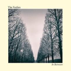 The Feelies: In Between